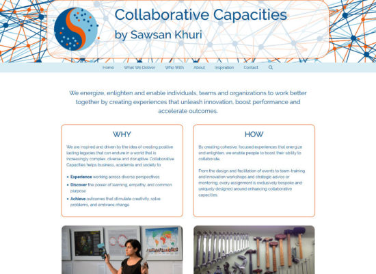 Collaborative Capacities
